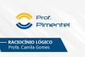 Raciocínio Logico   Prof. Camilla Gomes