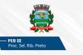 Seletivo de Ribeirão Preto   PEB III