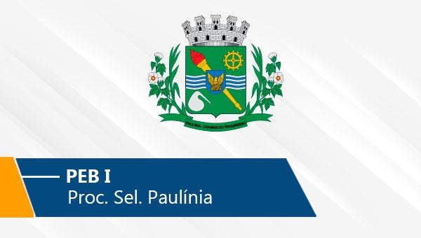 Seletivo de Paulínia | PEB I (On-line)